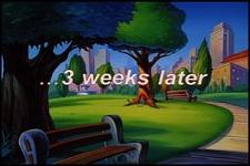 Animaniacs Season 4 Image