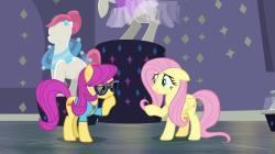 My Little Pony: Friendship Is Magic Season 8 Image